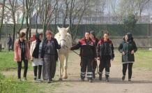 Dokunmaya korktukları atların seyisi oldular