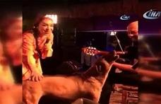 Leman Sam şarkı söylerken sahneye köpek fırladı
