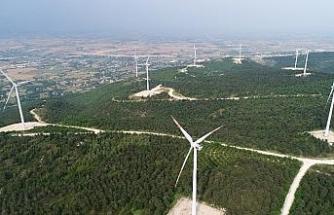 """Türkiye'nin """" Enerji Gülleri """" havadan görüntülendi"""
