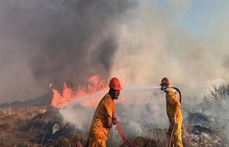 Bodrum 40 hektarlık alan kül oldu