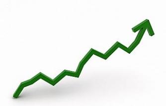 Tarım-ÜFE yüzde 0,08 arttı