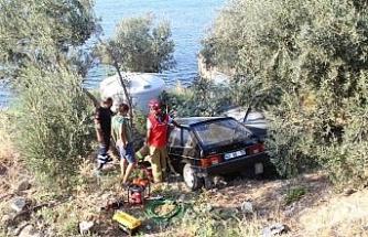 Alkollü sürücü zeytin ağacının üzerine uçtu