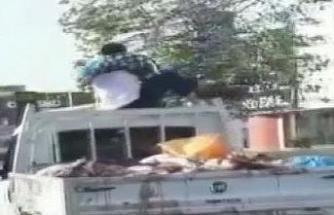 Kurban etleriyle kamyon tepesinde selfie