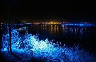 Burası Cizre: Kayyumla artık ışıl ışıl