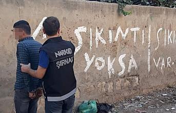 Şırnak'ta torbacı operasyonu: 21 gözaltı