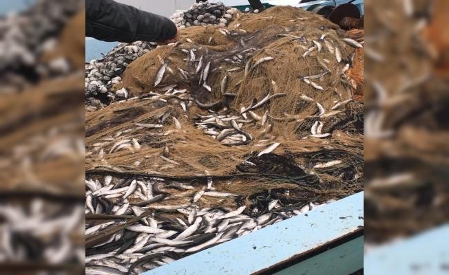 Balıkçıların imdadına kefal yetişti