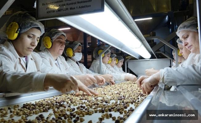 Fındık ihracatı arttı