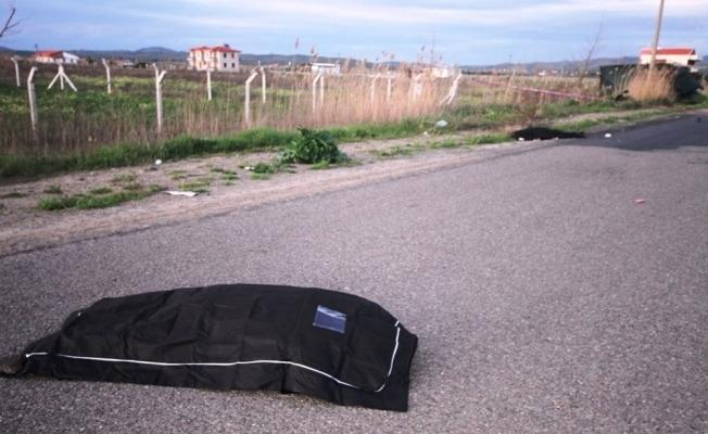 Yoldan çıkan otomobil 2 kadını biçti