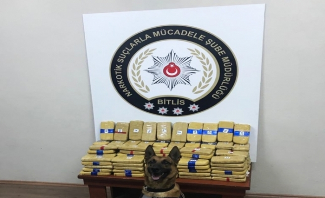 Detektör köpek 73 kilo eroini buldu