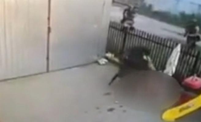 Polisi kapısında görünce camdan düştü