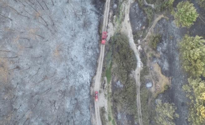 Yangın sonrası yürek burkan görüntüler