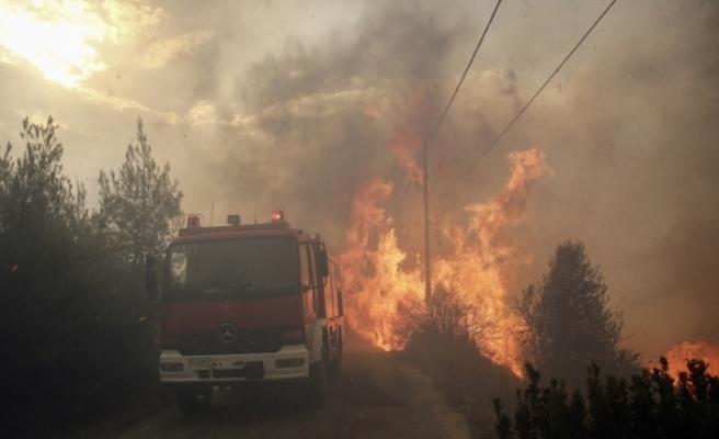 Yunanistan'daki yangın can aldı