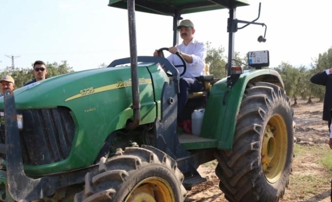Bakan Pakdemirli tarlaya indi, traktör kullandı