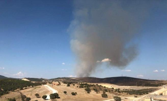 İzmir'de orman yangın