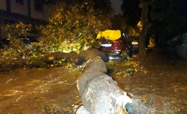 Ankara'da sağanak yağış ve rüzgar etkili oldu