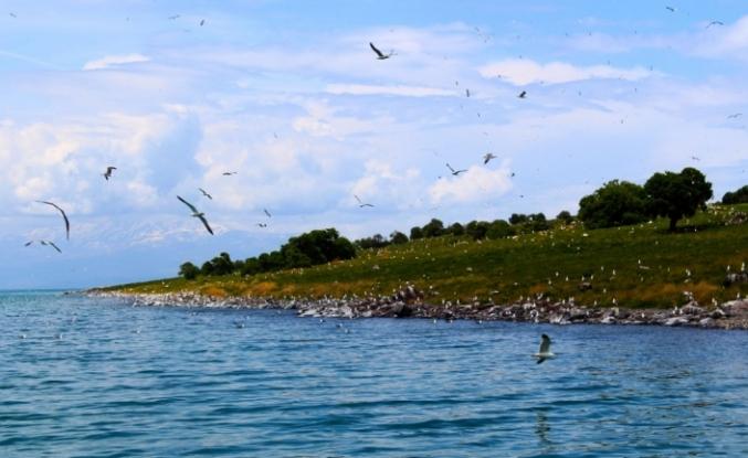 Adır Adası eşsiz dokusuyla büyülüyor